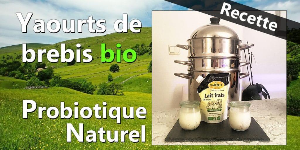 Recette yaourt de brebis bio - Probiotique naturel