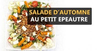 salade d'automne au petit épeautre