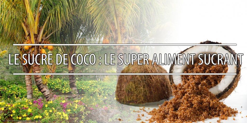 Le sucre de coco : le super aliment sucrant