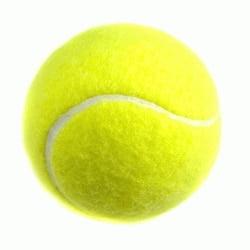 poids balle de tennis