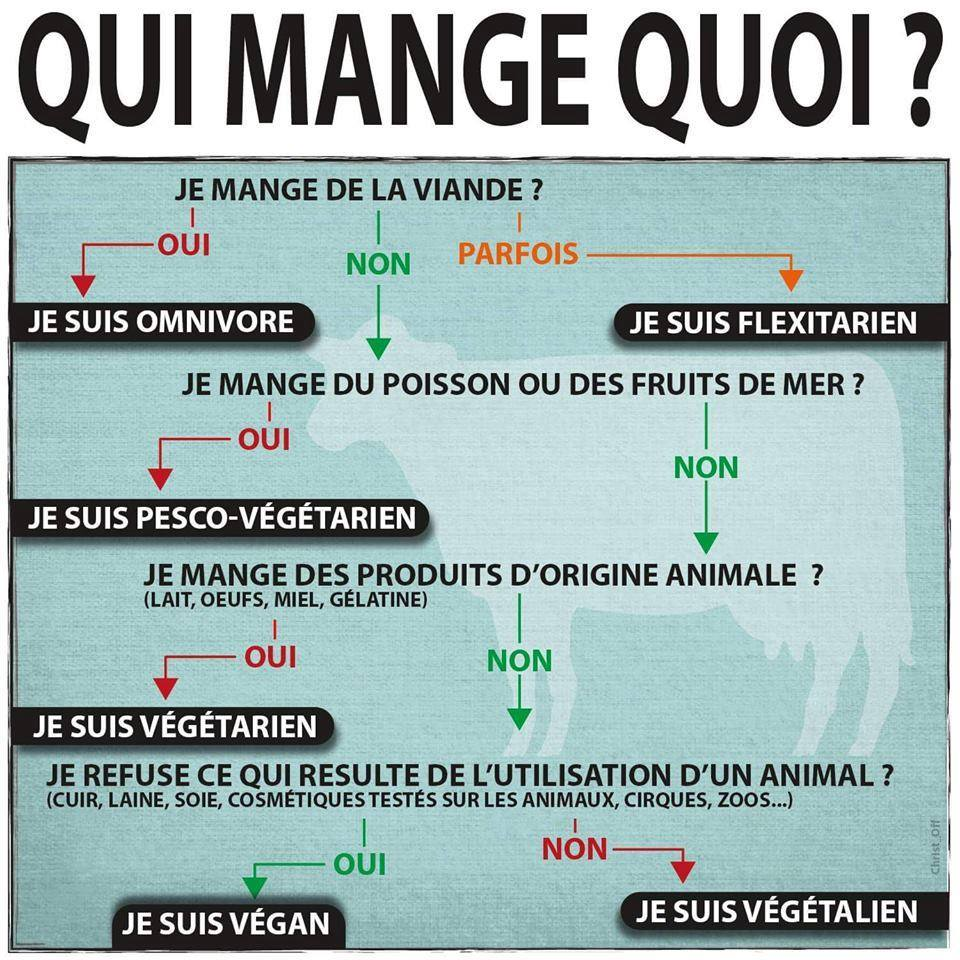 Faut-il manger de la viande : vegan vegetarien
